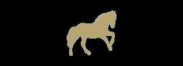 Gouden paarden
