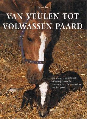 Van veulen tot volwassen paard